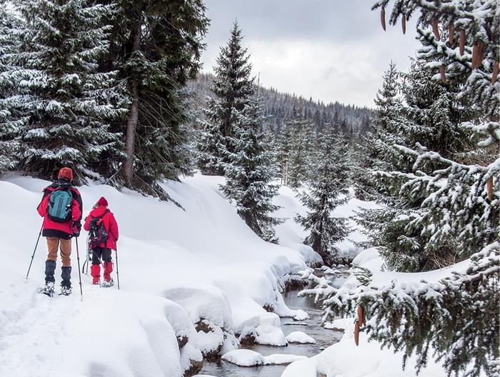 Spacer w rakietach snieżnych w okolicy Szklarskiej Poręby