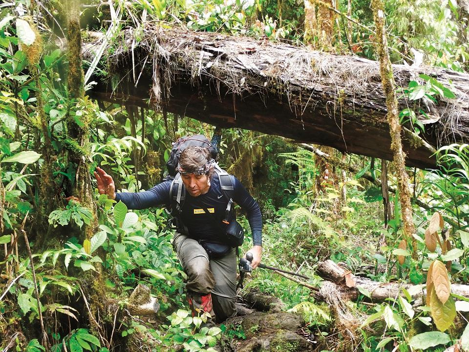 W dżungli nie ma szlaków. Są zarośla, powalone konary i dużo, dużo błota